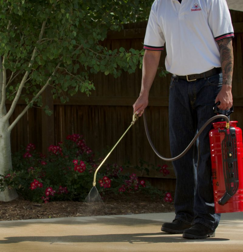 DecoMax Landscaping Sealing Services